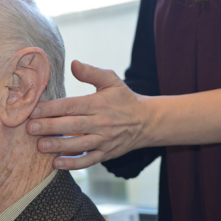 acupuncture-ear-points